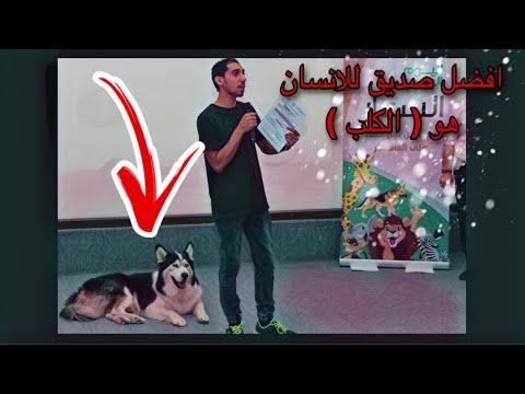 هل تربيه الكلاب حرام او حلال Youtube