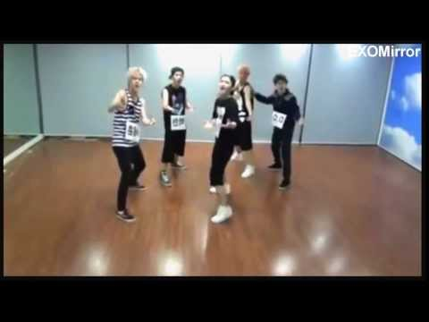 [Mirror] Why So Serious EXO Dance Practice