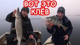 Ловля щуки и окуня на спиннинг Весенняя рыбалка 2020
