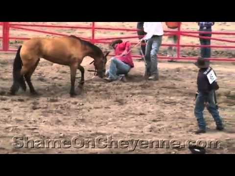Cruelty, Death at 2011 Cheyenne Rodeo Wild Horse Race
