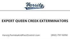 Expert Queen Creek Exterminators at Varsity Termite & Pest Control