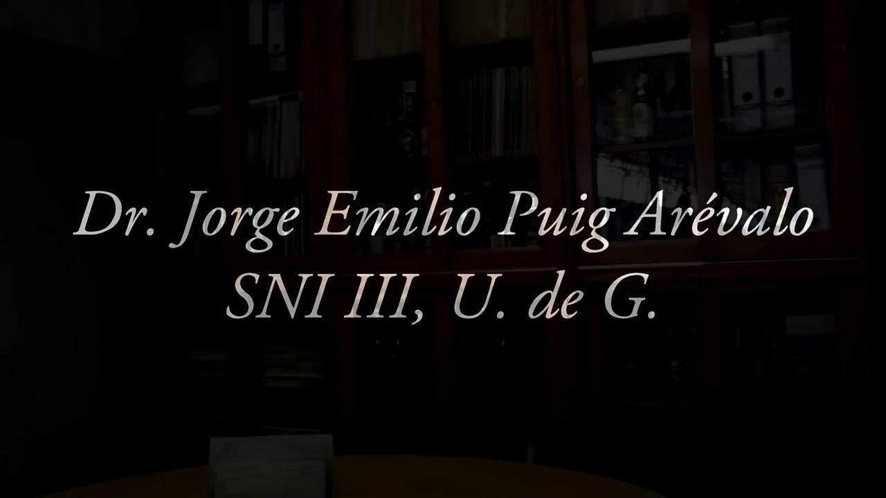 Entrevistas a investigadores del SNI