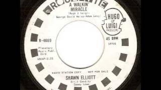 Shawn Elliott - A Walkin