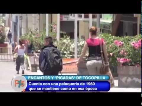 ENCANTOS Y PICADAS DE TOCOPILLA