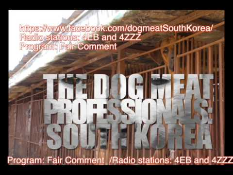 Radio interview regarding The Dog Meat Professionals: South Korea