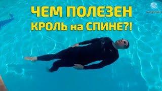 Плавание Кролем на Спине ! Как Появился Этот Стиль и Почему Любителям Плавания Стоит его Освоить?!
