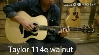 Taylor 114e Walnut review