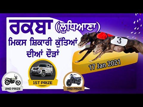 LIVE 🔴 RAQBA / ਰਕਬਾ (Ludhiana / ਲੁਧਿਆਣਾ) INDIAN & IMPORTED GREYHOUND TRACK RACES [ 17-Jan-2021 ]