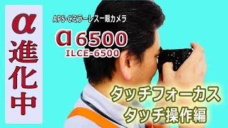 毎日α6500で遊んでいる店長です。これカメラの進化は素晴らしいものがあ...