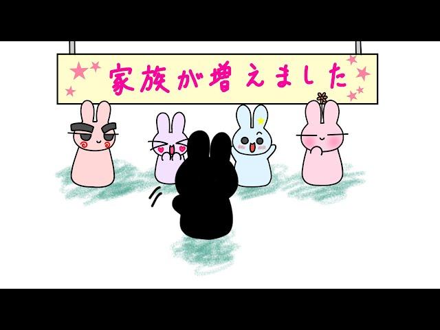 【ウサギアニメ】新しい家族が増えました! @ポポアニメ#Shorts