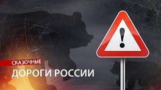 Бездорожье россии 2019. XY News