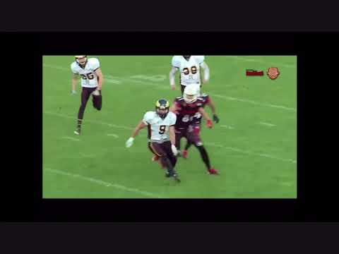German Football League Offensive Rookie of The Year