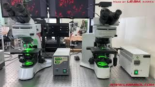 (주)리암솔루션 형광 현미경