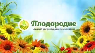 Фитолампы белого света Люмика Квартет(, 2017-02-24T10:16:23.000Z)