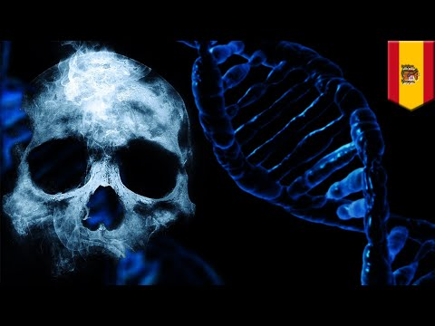 Gene research: Genes might be key to figuring out time of someone's demise - TomoNews