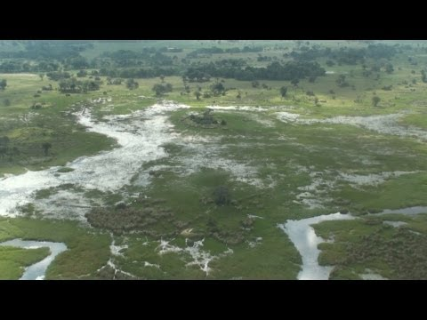 Okavango Delta Flight - Botswana