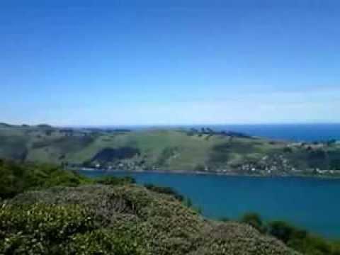 Dunedin Lookout. Signal Hill.