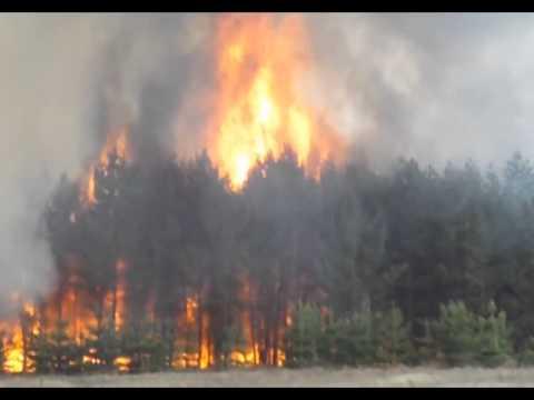 фото пожара на амурской