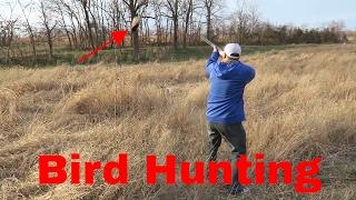 Bird Hunting With ShotGun | Quail, Chuckar, Pheasants