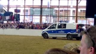 Polizeihund springt durch Autoscheibe !
