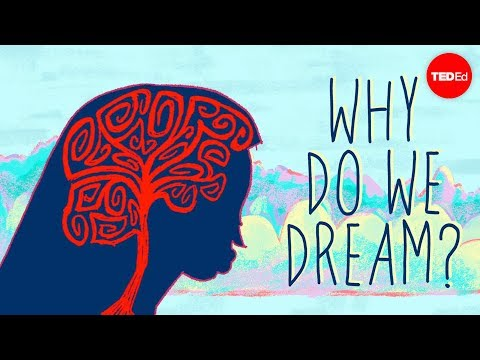 Why do we dream? - Amy Adkins thumbnail