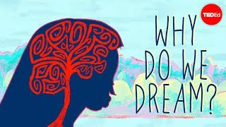 Скачать Why Do We Dream Amy Adkins