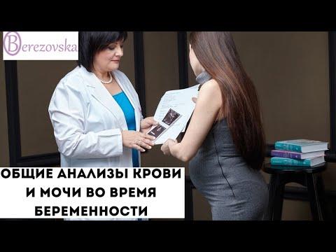Общие анализы крови и мочи при беременности - Др. Елена Березовская