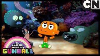 Sır   Gumball Türkçe   Çizgi film   Cartoon Network Türkiye