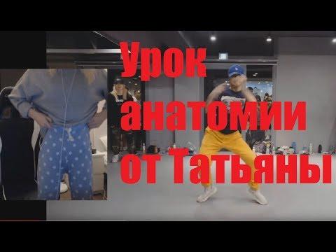 GTFOBAE | Урок женской анатомии от стримерши - Смешные видео приколы