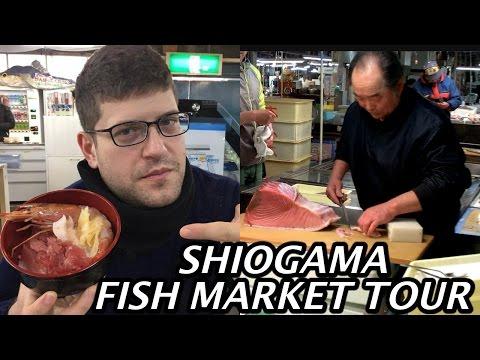SHIOGAMA  FISH MARKET TOUR
