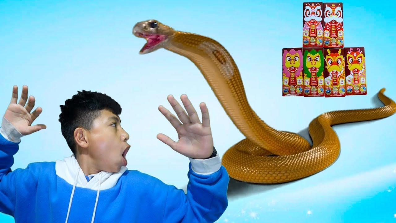 Câu chuyện rắn thần trả ơn bằng bánh Marine Boy và cái kết ❤ ABC ❤