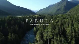 Fabula - Natural wood-effect porcelain tiles