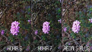Nokia 6 2018 VS Nokia 7 VS Redmi 5 PLUS Camera Comparison