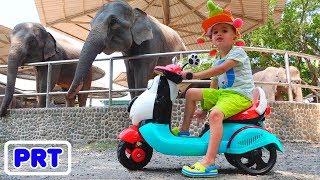 Little Nikita brincar no zoológico