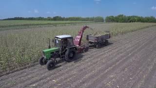 Corn Silage harvest 2018