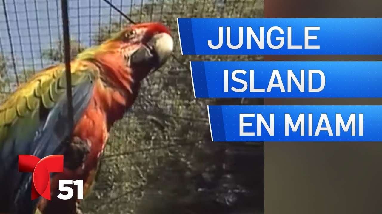 Miami, Ayer y Hoy: Jungle Island