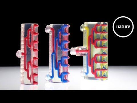 New 3D Printer Makes Multi-material Robots