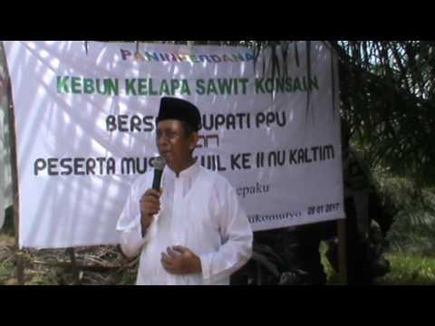 Sambutan Ketua Tanfidiyah PW NU Kaltim Di Acara Panen Perdana Kebun Konsain