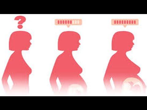 Pregnancy signs at two weeks