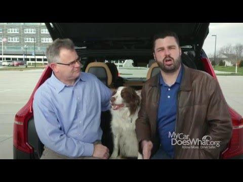 Automatic Emergency Braking (AEB) - With Rick & Dan
