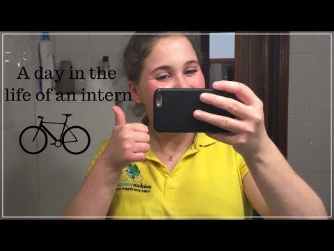 A day in the life of an Intern | Andalucía Tours & Discovery