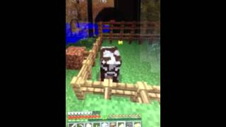 Mine craft cow getting down