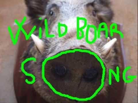 ElmasE - Wild Boar Song