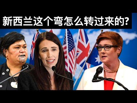 新西兰这个弯怎么转过来的?/世界卫生大会闭幕/人民银行提升外汇准备金率控制人民币汇率(字幕)/The 74th World Health Assembly Closes/王剑每日观察/20210531