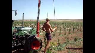Установка  металлических виноградных столбиков с крючками (