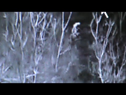 aired May 2015 New - Bigfoots found in Texas ☆ SE 06 EP 06 Slow motion copy of Survivorman clips