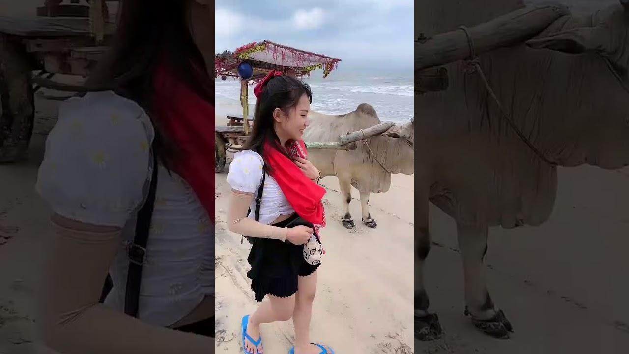 越南媳婦到底好不好養?