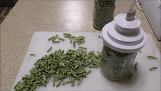 How to Make Shuck Beans or Leather Britches (aka How to String Beans)