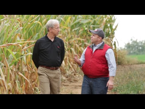 The Minute Episode 30: Protect Every Inch of the Furrow