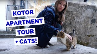 Kotor Apartment Tour in Montenegro(, 2018-01-26T15:00:01.000Z)